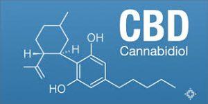 cbd-cannabinoid